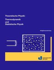 Theoretische Physik 1 (Elementarteilchenphysik) / Uni Siegen