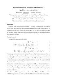 Download preliminary PDF - Theoretische Physik IV - Ruhr ...