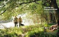Freunde der Zwangssymbiose - Deutsche Trüffelbäume