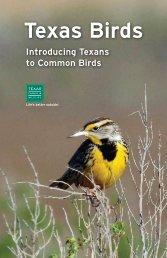 Texas Birds Booklet - Texas Parks & Wildlife Department
