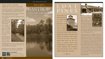 Interpretive Guide to Bastrop and Buescher State Parks