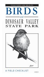Birds of Dinosaur Valley State Park - Texas Parks & Wildlife ...