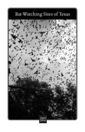 Bat Watching Sites of Texas - Texas Parks & Wildlife Department