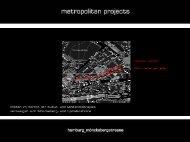 Lichtplanung für die Mönckebergstraße.pdf