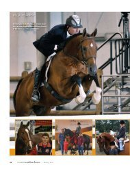 Michael Featured in Modern Arabian Horse ... - Tranquillity Farm