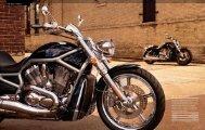 THE VRSC™ FamILY - Harley-Davidson