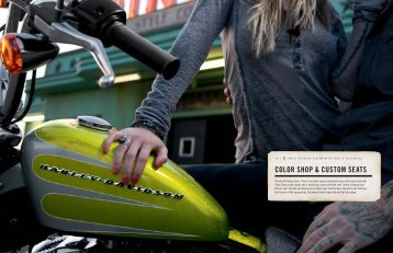 COLOR SHOP & CUSTOM SEATS - Harley-News