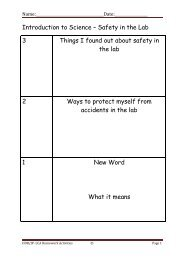 Science Revision Homework Worksheet 1 - Working in a Lab - PDST