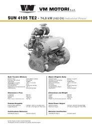 SUN 4105 TE2 - 74,8 kW (102 CV) Industrial Power - TransDiesel