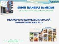 Programul CSR 2013 in format PDF - Transgaz