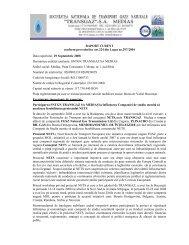descarca raportul - Transgaz