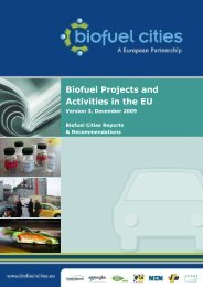 Biofuel Projects and Activities in the EU - Transport Research ...