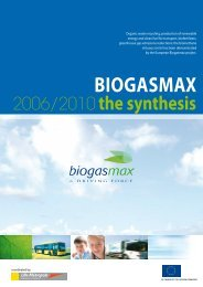 Synthesis report BIOGASMAX