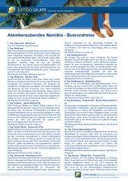 Atemberaubendes Namibia - Busrundreise - Travel & More