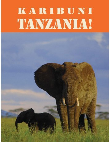 4 0510 Issue TANZANIA.qxp - Travel World News