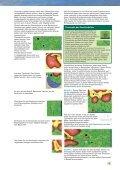 Die Täler von Yorkshire sind berühmt für ihre ... - Treefrog Games - Seite 7