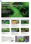 Aquaristik Katalog - ZOO & Co. - Seite 6