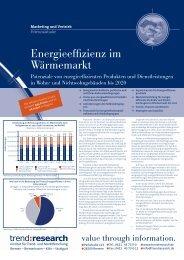 Energieeffizienz im Wärmemarkt - trend:research