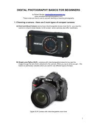 Digital Photography Basics for Beginners - PDF - The Canadian ...