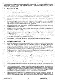 Ergänzende Bedingungen NAV 20070601