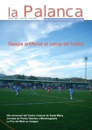Gespa artificial al camp de futbol - La Palanca