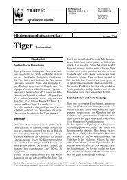 Tiger hg final f k 3