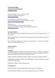 Curriculum Vitae - Laboratory of Thermofluids, Combustion and ...