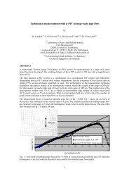 µPIV Applied to Macroscopic Flows