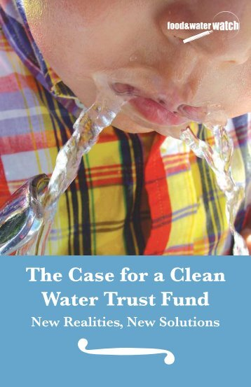 The Case for a Clean Water Trust Fund: New Realities, New Solutions