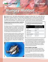 PDF File - Food & Water Watch