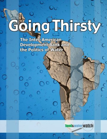 The Inter-American Development Bank and the Politics of Water