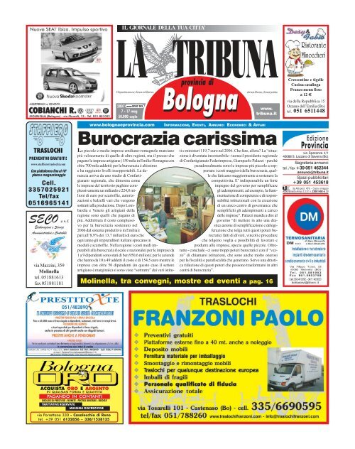 The Mountain Bambini T-shirt trovo ricerca 10 Pumas montagna Leone Felini Tg S