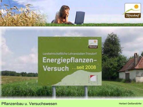 Energiepflanzenversuch.pdf