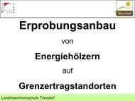 Energiewald_Heinz.pdf