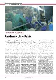 H1N1, der Erreger des Jahres 2009 - Trillium