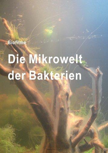 Mikrobiologie - Trillium