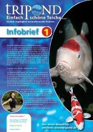 Infobrief 1 (PDF ca. 2.3 MB) - Tripond