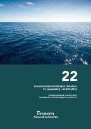 22 Konsekvensvurdering i forhold til Danmarks havstrategi