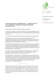 Arbejdsrapport for gruppe 1 - Transportministeriet