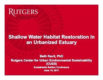 Shallow Water Habitat Restoration in an Urbanized Estuary Shallow ...
