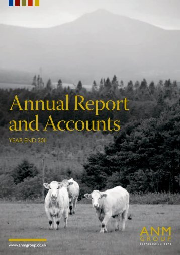 Annual Report And Accounts - ANM Group