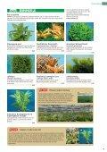 INFO nur Nano Crusta Tree S - Seite 5