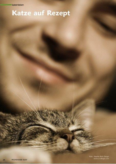 Katze auf Rezept - Pfotenhieb