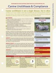 Canine Urolithiasis & Compliance - HillsVet