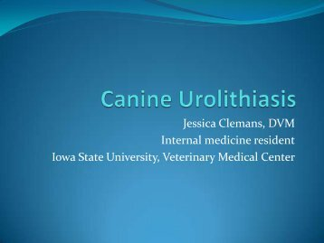 Jessica Clemans, DVM Internal medicine resident ... - Bichon Health
