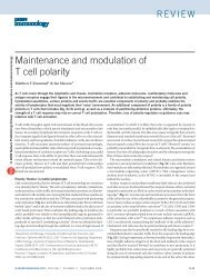 Maintenance and modulation of T cell polarity - Departments of ...