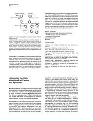 Untangling the Web: Mitochondrial Fission and Apoptosis