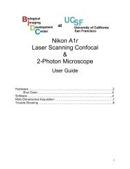 Nikon A1r Laser Scanning Confocal & 2-Photon Microscope