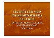 MATRETTER MED INGREDIENSER FRA NATUREN - Helseetaten