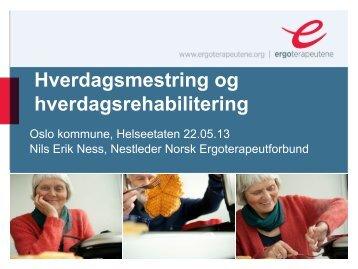 Presentasjonen til Nils Erik Ness - Helseetaten